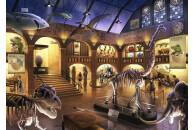 Ravensburger 12925 Exit Kids Puzzle Im Naturkundemuseum - 368 Teile, ab 9 Jahren