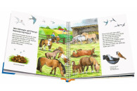 Ravensburger WWW Junior: Das Pony