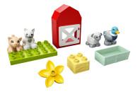 LEGO® 10949 DUPLO Tierpflege auf dem Bauernhof Kleinkinder Spielzeug ab 2 Jahren mit Figuren: Ente, Schwein, Schaf und Katze