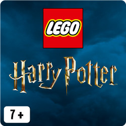 LEGO® Harry Potter Sets